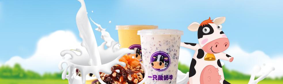 一只酸奶牛加盟.png