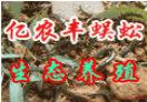 亿农丰蜈蚣